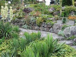 pin by johanna on succulent rock wall pinterest gardens popular and lush