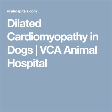 cardiomyopathy in dogs 1000 ideas about dilated cardiomyopathy on hypertrophic cardiomyopathy
