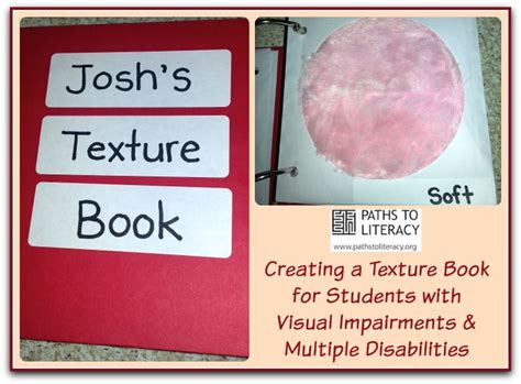 reference books on visual impairment 1000 ideas about disabilities on
