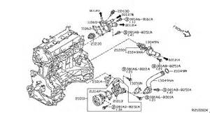 2006 Nissan Altima Thermostat Replacement Thermostat Location 2001 Nissan Altima Get Free Image