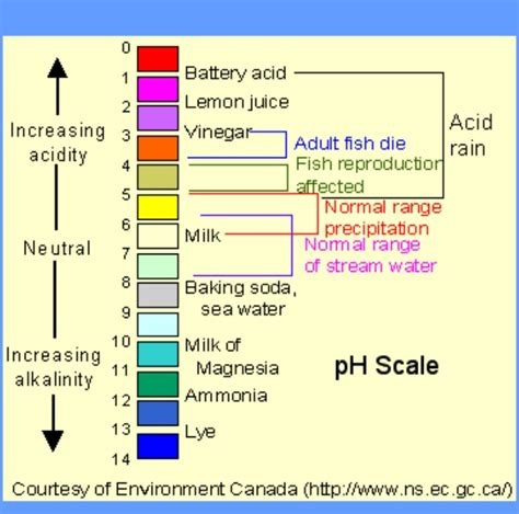 What Kind Of Water Do You Wash Colors In - chart outlining the ph scale