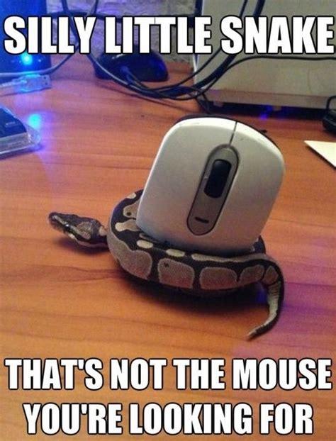 Best Memes 2014 - best meme 2014 wrong mouse jpg