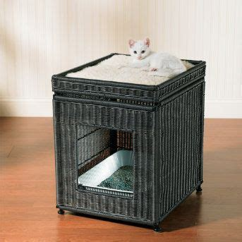 A Tiny Apartment A Sticky Litter Box by Best Litter Box For Small Apartment Home Design