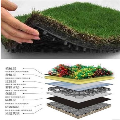 Plastic Drainage Mats by 8 30mm Hdpe Green Roof Dimple Sheets Drainage Matting