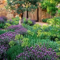 Lavender Garden Ideas How To Plant An Easy Garden Sunset