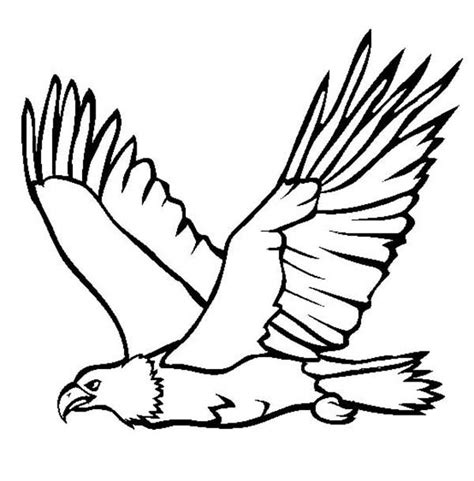 coloring page eagle flying great flying bald eagle coloring page netart