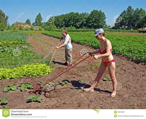 Is Working In The Garden by Working In Garden Royalty Free Stock Photo Image