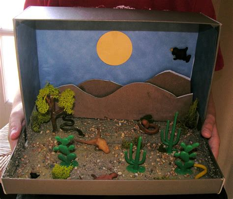 How To Make A Paper Diorama - how to make a desert diorama craft