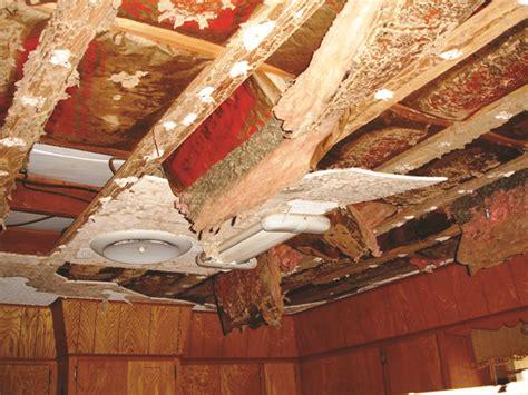 termite ceiling damage termites  ceilings