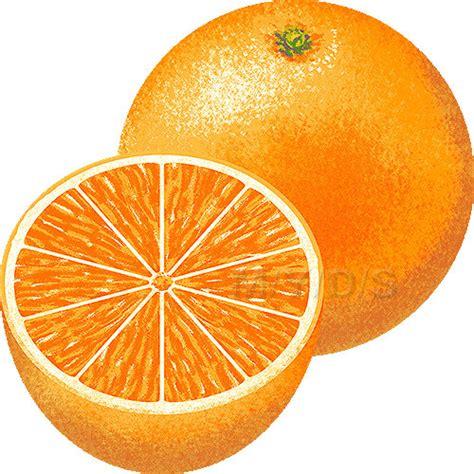 orange clipart orange clipart clipart cliparting