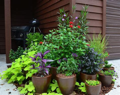 Potted Garden by Container Gardening Part 1 Garden