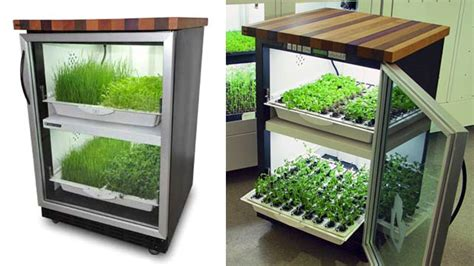 hydroponic garden blends   kitchen  year