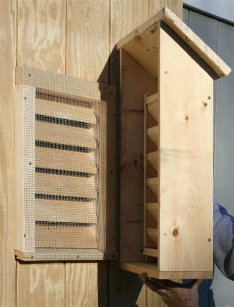bat house designs bat guys the suburban bat house