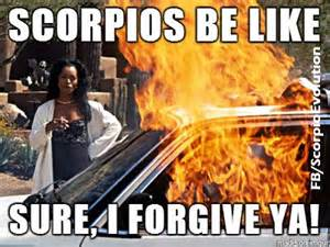 Scorpio Memes - pin by jennifer cbell on a poster girl with no poster