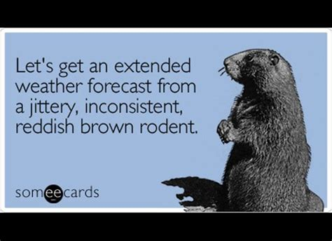 groundhog day jokes pictures the funniest groundhog day someecards winter