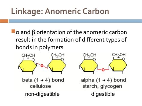 carbohydrates bonds carbohydrates intro