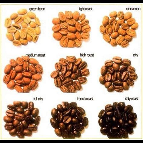 different types of coffee beans interesting coffee stories pinterest coffee beans beans