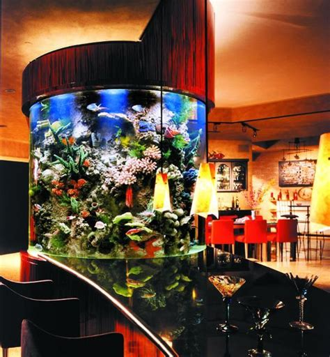 Fish Tank Dining Room Table by 35 Aquariums And Custom Tropical Fish Tanks For