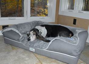 Beds For Big Dogs by 7 Of The Best Beds For Large Dogs Barkpost