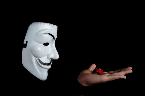 hombres desnudos anonimos photo of guy fawkes mask with red flower on top on hand