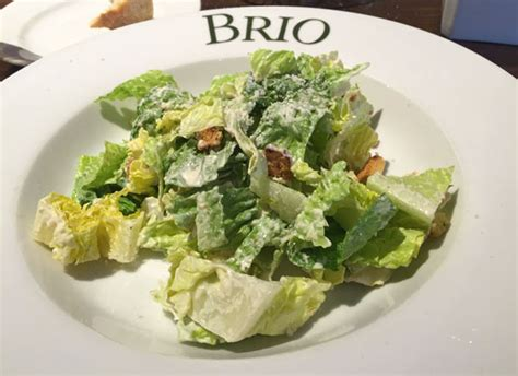brio salads review of brio tuscan grille 33388 restaurant 499 s university
