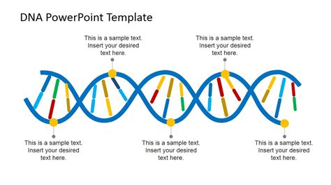 template strand dna strands powerpoint template slidemodel