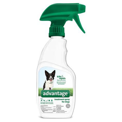 flea spray for dogs advantage treatment spray flea 1800petmeds