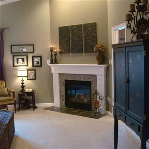 home interior lion picture sherwin williams paint ideas color is stone lion love