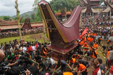 Tshirt Toraja Indonesia Pa Tedong tana toraja funeral procession in south sulawesi indonesia