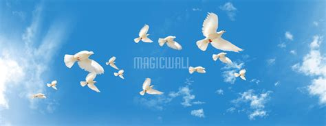 white doves flying wall murals wall decals posters