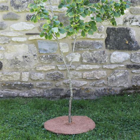 Tree Mat by Tree Mat 3 Pack Haxnicks