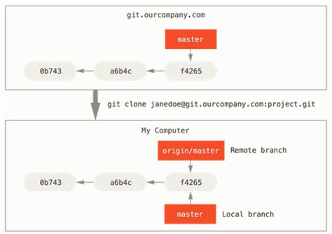 git tutorial clone branch tutorial git and github terminologies 2018