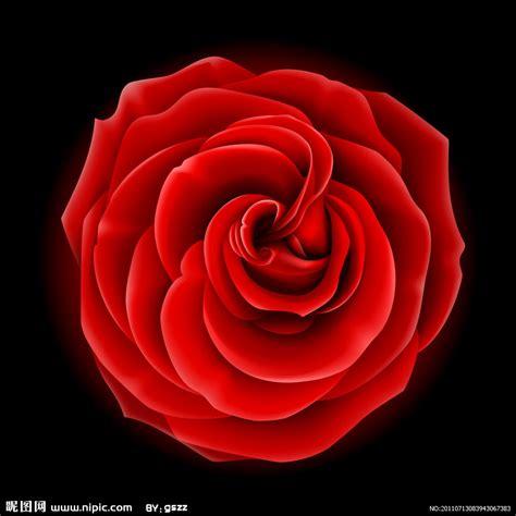 伤感红玫瑰图片大全 红玫瑰图片大全 动态红玫瑰图片大全 红玫瑰图片大全 浪漫 红玫瑰图片大全大图 动态红玫瑰 小龙文挡网