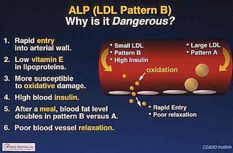 pattern b ldl test brianna diorio blood work basics