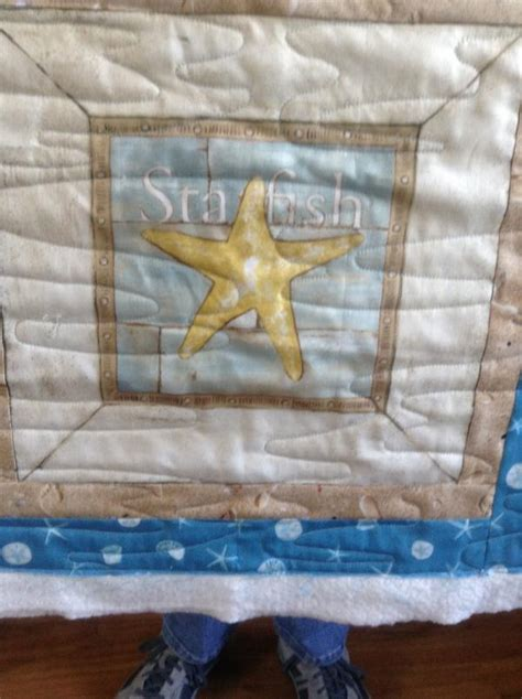 Panel Play Quilt Book by Kathy S Starfish Panel Play Susan K Quilting