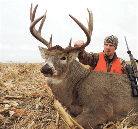 and bucks 6 great tips to kill big bucks in the most unlikely places