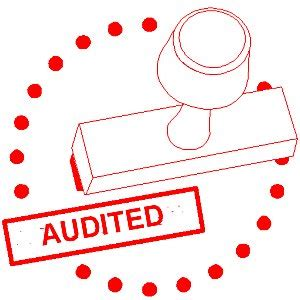 auditing interno companies act 2013 audit auditors and accounts