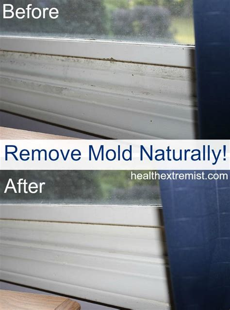 how to get rid of moisture in basement 25 best ideas about remove mold on cleaning mold mold in bathroom and bathroom mold