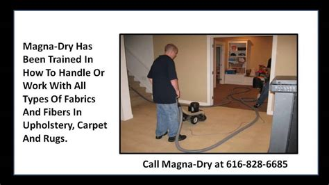 Upholstery Cleaning Grand Rapids Mi by Best Carpet Cleaning Grand Rapids Mi 49546