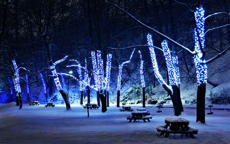 lights trees park bench picnic tables winter snow night