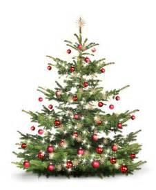 weihnachtsbaum entsorgungsanlass 2017