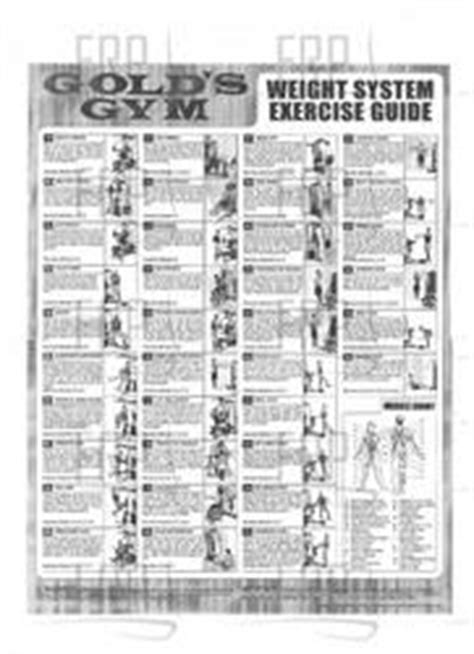 chart exercise 6026360 fitness and exercise equipment