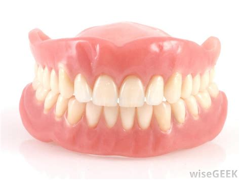 teeth of the what are the different types of artificial teeth