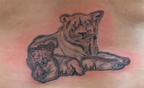 lion tigers page 3 tattoos lion tigers page 3 tattoo