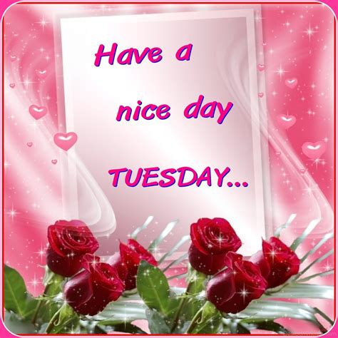 tuesday pictures images graphics page