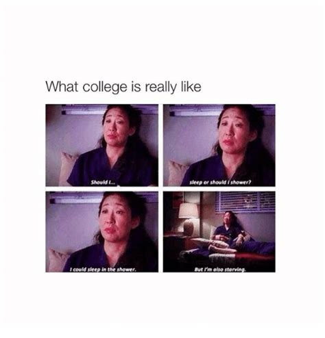 College Sleep Meme - 25 best memes about college and sleeping college and