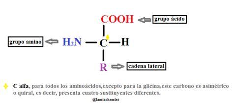 cadena lateral de aminoácidos amino 193 cidos introducci 243 n y clasificaci 243 n qu 237 mica m 225 s f 225 cil