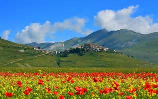 Poppies Flowers Castelluccio イタリア 山 ケシの花 村 壁紙 1920x1200 壁紙ダウンロード Ja Best Wallpaper Net