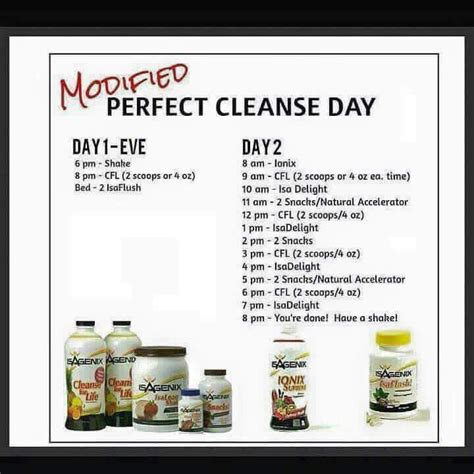 Cleanse Smart 14 Day Detox What To Eat by Modified Cleanse Day Isagenix Meals And Support