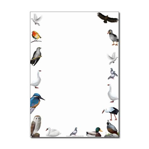 Bird Bordir by Birds Found In Britain Themed Page Border Writing Frame